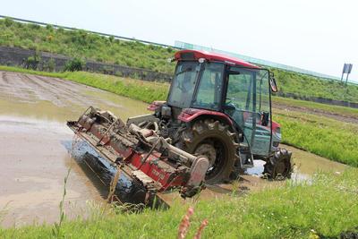 妙高山麓から広がる広大な田園地帯で米作り